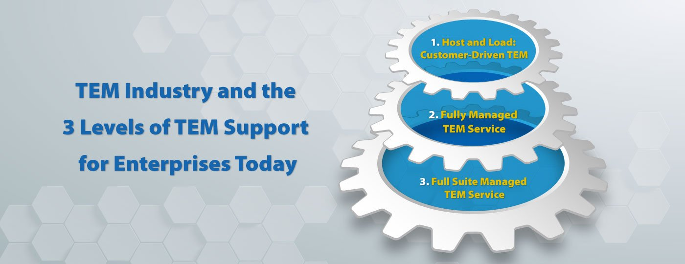 TEM Industry and the 3 Levels of TEM Support for Enterprises Today